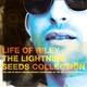 Lightning Seeds - Marooned