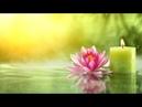 А.В.Клюев - Агенда Избранное - Полное Спокойствие - стремление - Психическое Существо и Обо Всём ✨✨✨