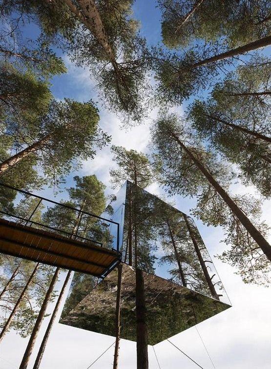 Необычный дом на дереве
