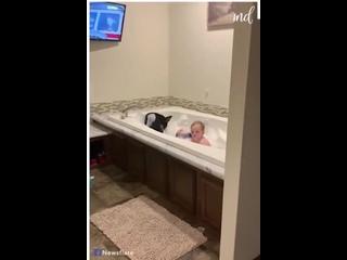 собакен тоже хочет принять ванну