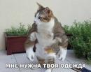 Личный фотоальбом Валентина Кушнира