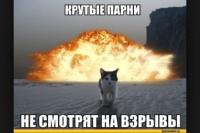 фото из альбома Александра Козлова №16