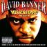 David banner feat lil flip