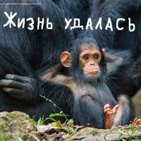 Фотография Романа Петрова