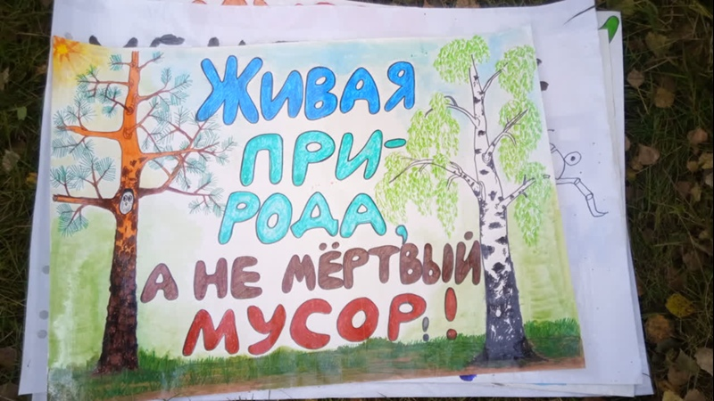 Волонтерский лагерь Живая Издревая 2019 наши плакаты