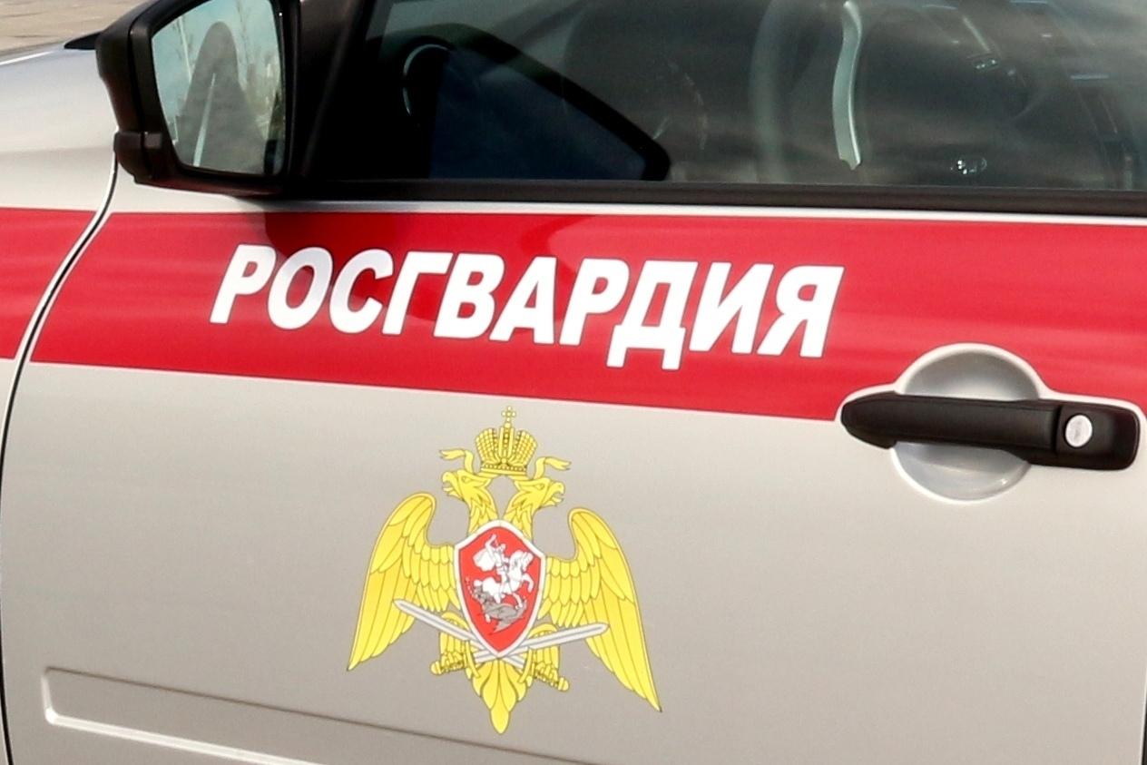 В Таганроге и Ростове росгвардейцы пресекли ряд правонарушений