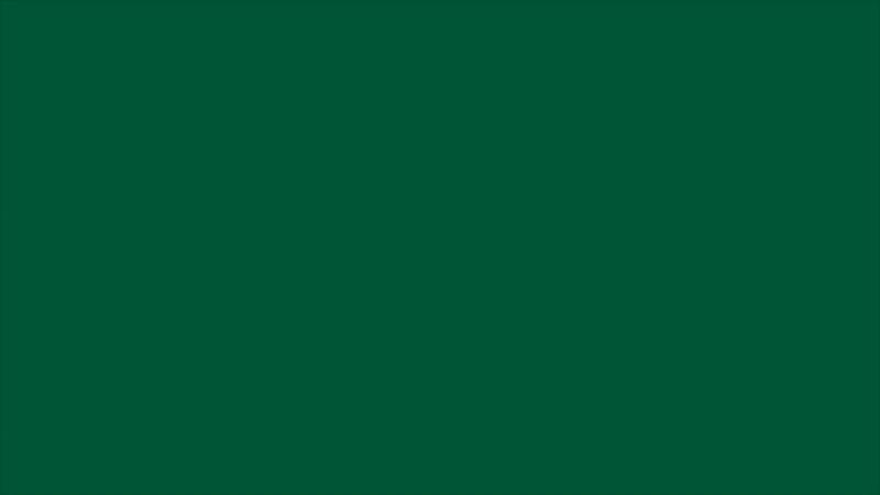 Скандинавский_одноэтажный_каркасный_дом_130_м2_с_продуманным_интерьером____FORUMHOUSE.mp4