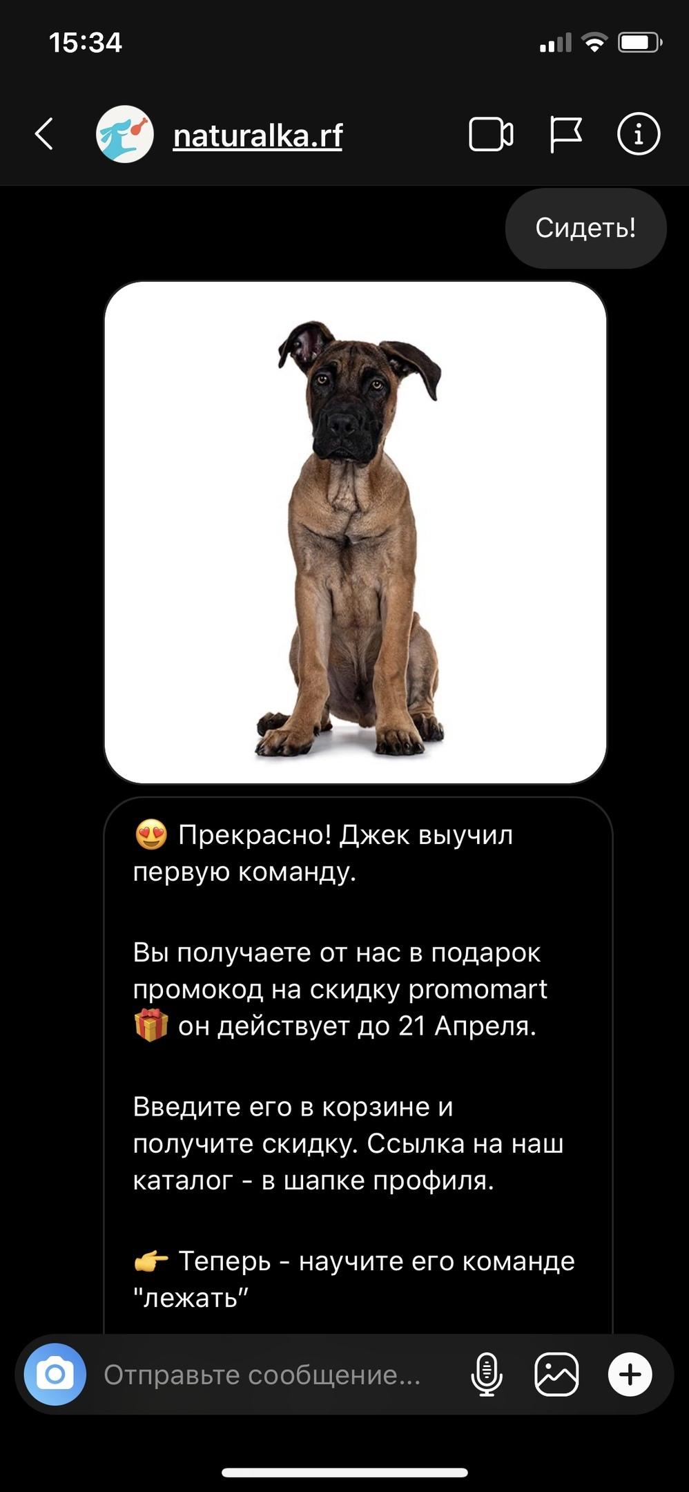 1300 продаж и 1500 подписчиков для интернет-магазина зоотоваров в Instagram, изображение №43