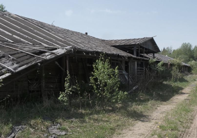 Брошенные здания совхозных ферм