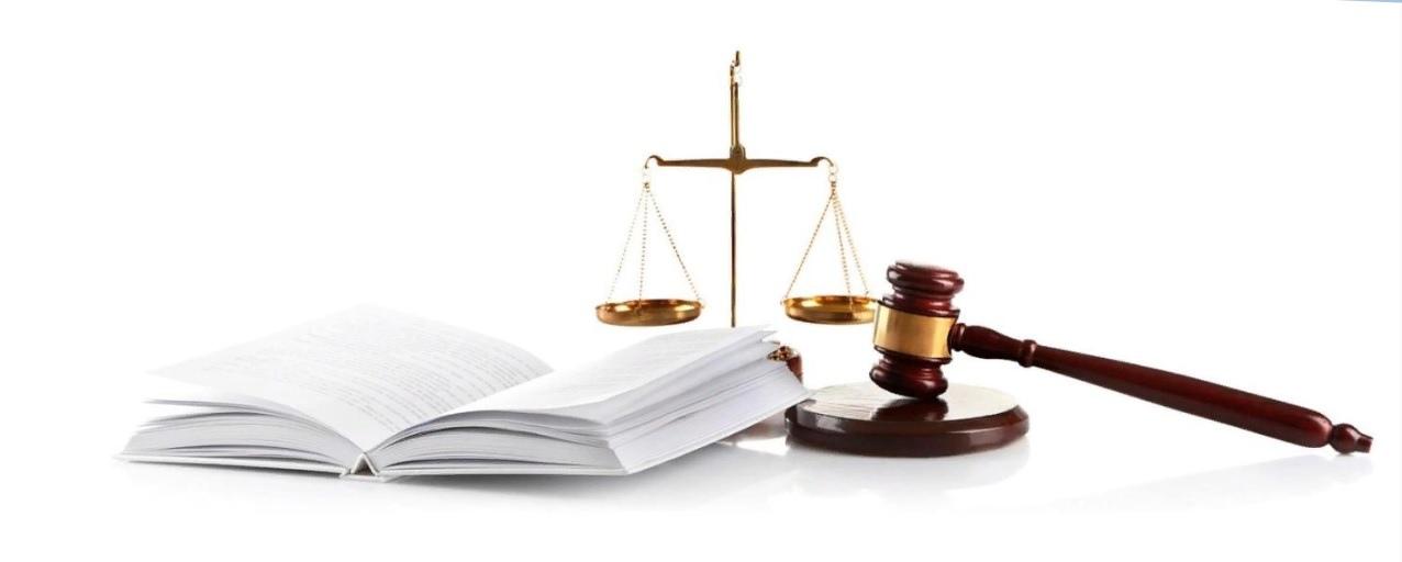 Юристы арбитражный суд представление Мытищи