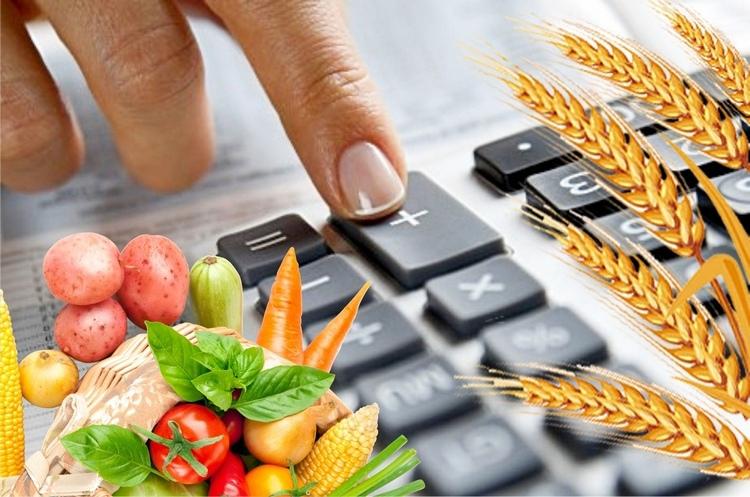Девятого августа стартует конкурс на получение субсидий для фермеров-растениеводов