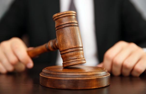 Прятал психотропы среди саженцев роз. Наркокурьеру присудили 11 лет лишения свободы