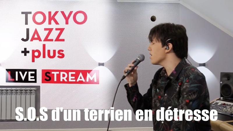 Dimash Kudaibergen S O S D'un Terrien En Détresse Tokyo Jazz Festival 2020