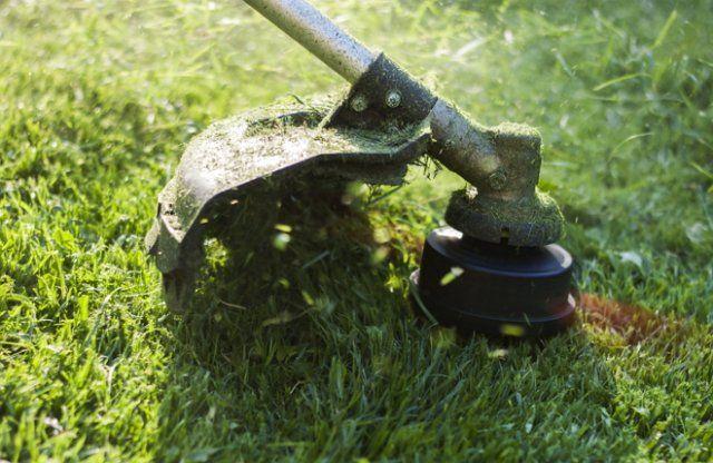 Как правильно стричь газон, изображение №7