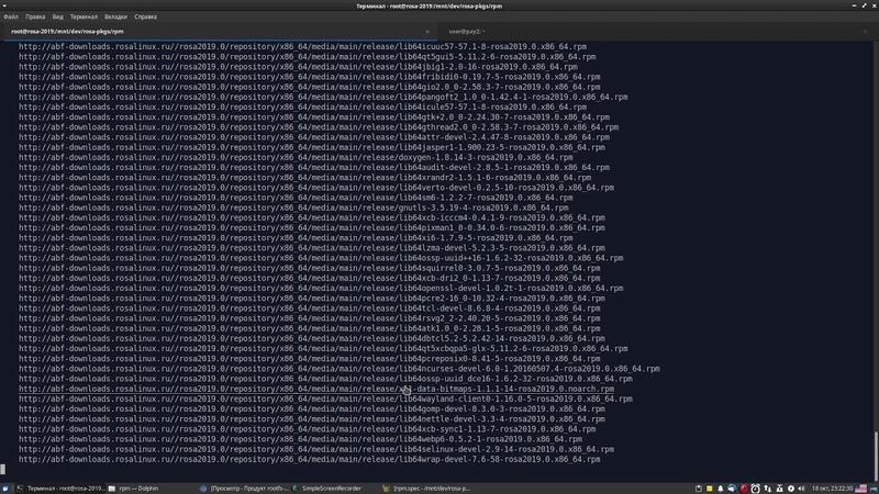 Сборка пакета с правками в контейнере rootfs ROSA. Часть 2