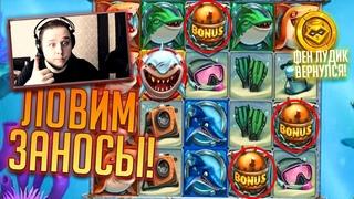 Заносы в новом Онлайн казино от Dragon money! - Фен лудик 💰