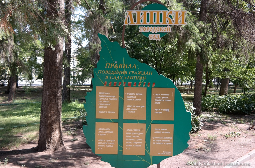 Старейший парк Саратова –Липки 2020