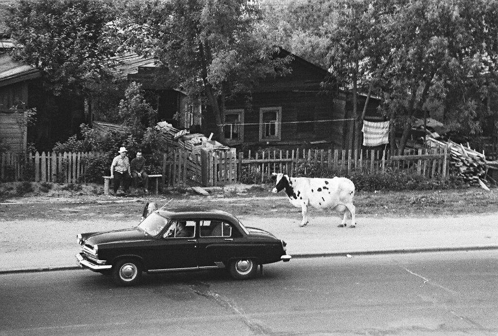 На Университетском проспекте.  Валерий Усманов, 1969 год, Москва.