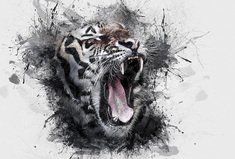 Загнанный зверь в клетке