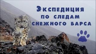 Горный Алтай 2020.  Экспедиция по следам снежного барса. Snow Leopard in Russia. Gorny Altai. Сибирь