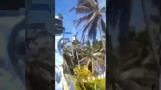 Aparatoso accidente de carreras clandestinas en Enriquillo, Barahona.